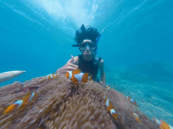 How to take underwater pictures with your iPhone like a pro